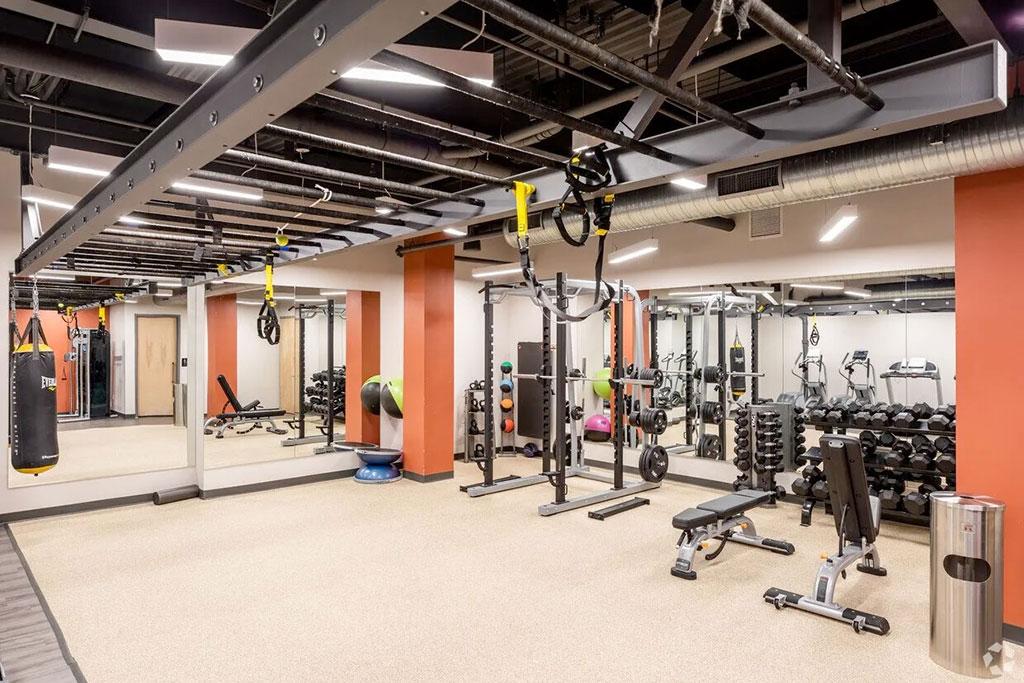 sono-50-office-gym